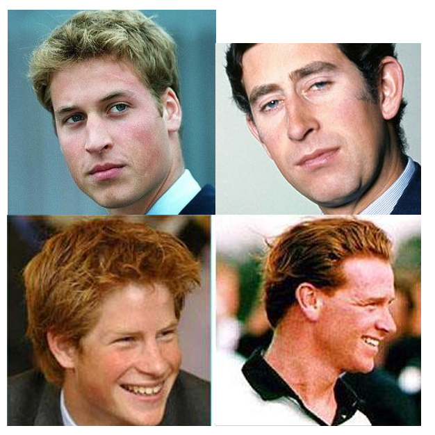 Is cavalry officer james hewitt prince harry s real father